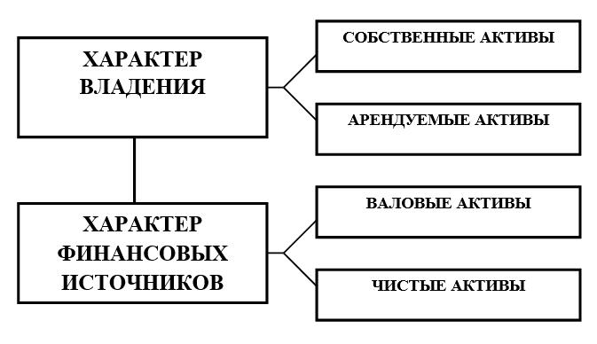 Активы по характеру владения и финансовых источников. Автор24 — интернет-биржа студенческих работ
