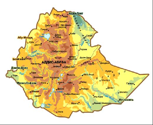 Эфиопия. Автор24 — интернет-биржа студенческих работ