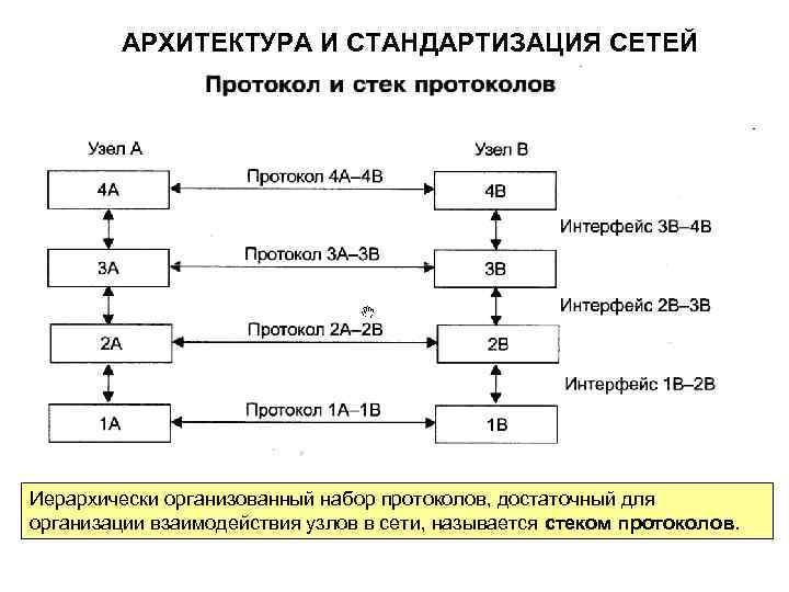 Схема протоколов и стека протоколов в стандартизации сетей. Автор24 — интернет-биржа студенческих работ