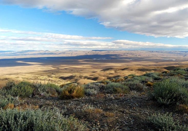 Полупустыни Северной Америки. Автор24 — интернет-биржа студенческих работ