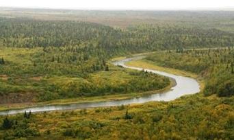 Ландшафт Ненецкого АО. Автор24 — интернет-биржа студенческих работ