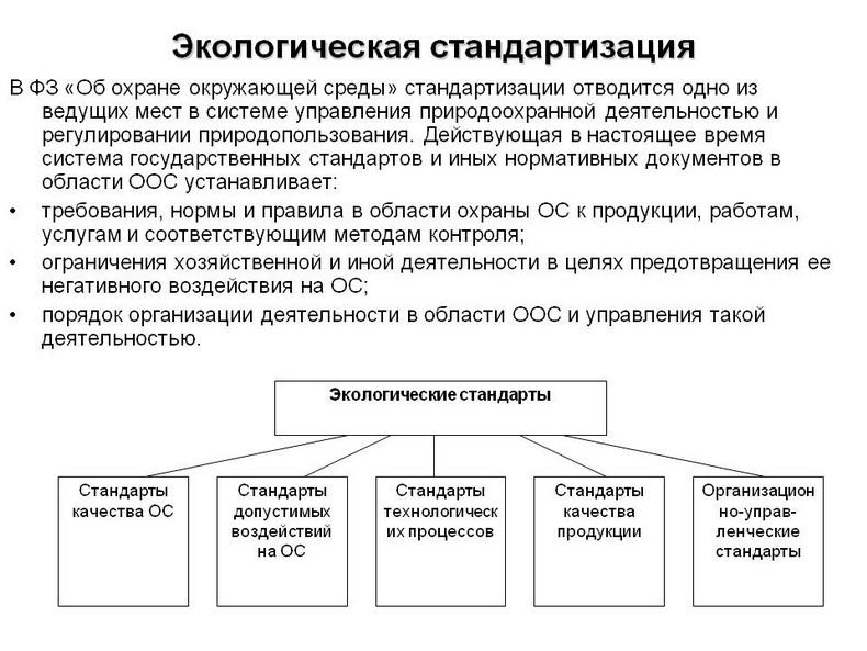 Основные принципы экологической стандартизации. Автор24 — интернет-биржа студенческих работ
