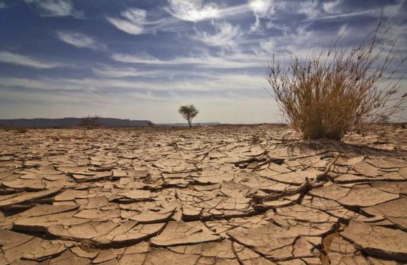 Последствия засухи. Автор24 — интернет-биржа студенческих работ