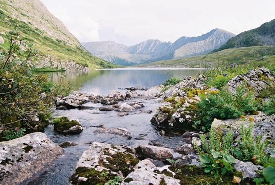 Горы Южной Сибири. Автор24 — интернет-биржа студенческих работ