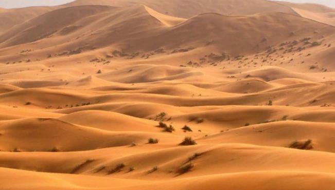Пустыня Сахара. Автор24 — интернет-биржа студенческих работ