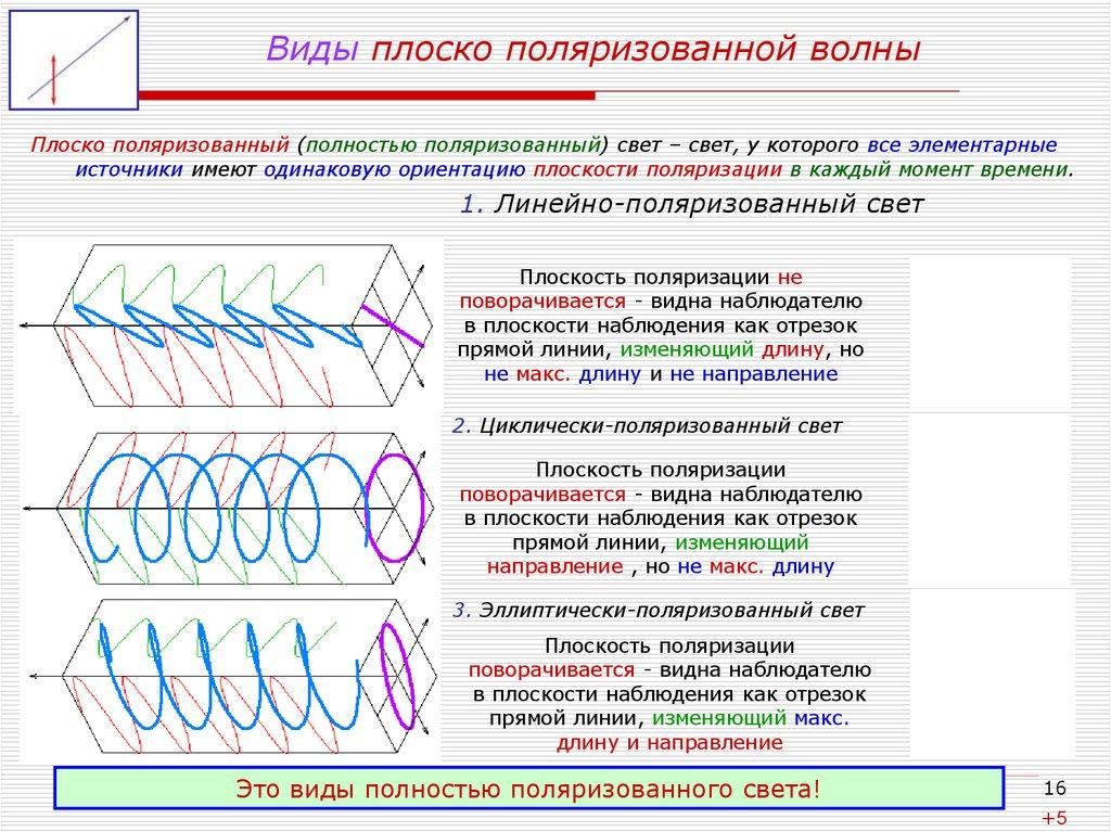 Виды плоско поляризованной волны. Автор24 — интернет-биржа студенческих работ