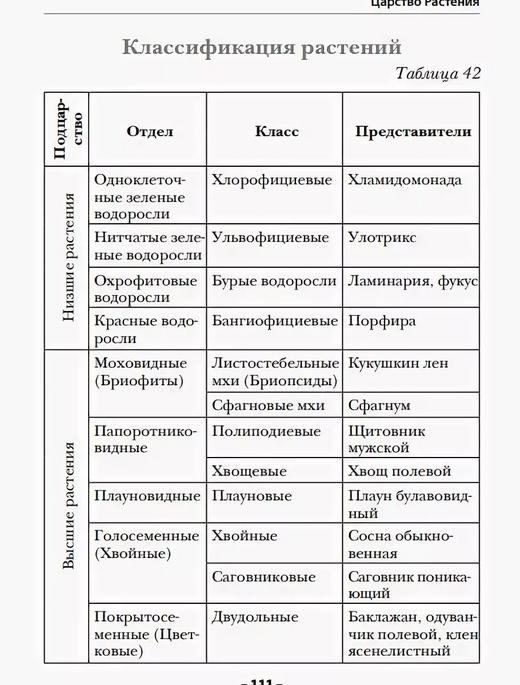 Классификация растений. Автор24 — интернет-биржа студенческих работ