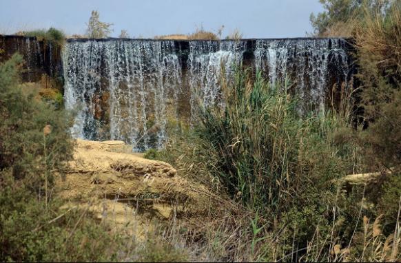 Оазис Эль-Файюм. Водопад Вади Райан. Автор24 — интернет-биржа студенческих работ