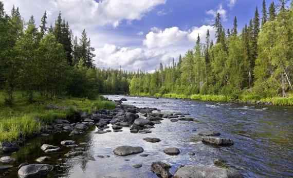 Ландшафт Финляндии. Автор24 — интернет-биржа студенческих работ