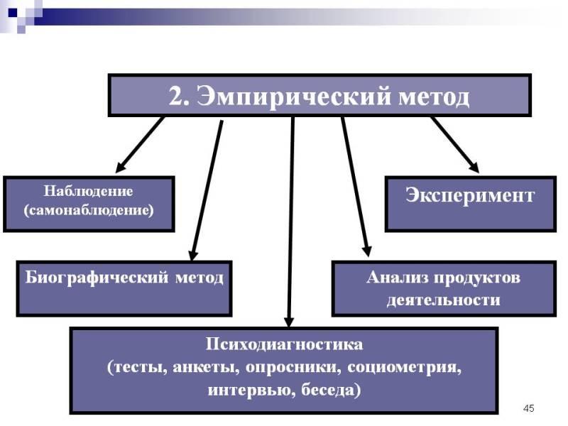 Эмпирические методы. Автор24 — интернет-биржа студенческих работ