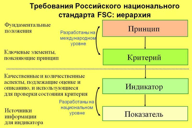 Требования Российского национального стандарта. Автор24 — интернет-биржа студенческих работ