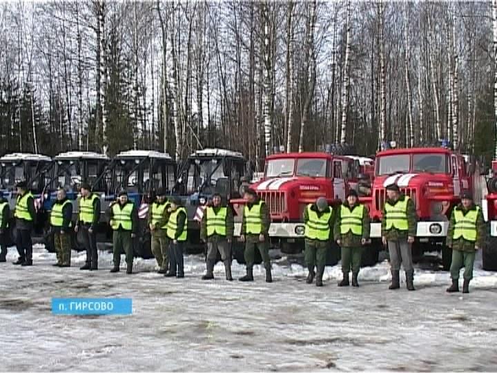 Лесоохранное подразделение. Кировская область. Автор24 — интернет-биржа студенческих работ