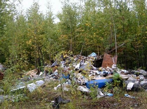 Одной из основных причин экологической катастрофы в стране являются бытовые отходы. Автор24 — интернет-биржа студенческих работ