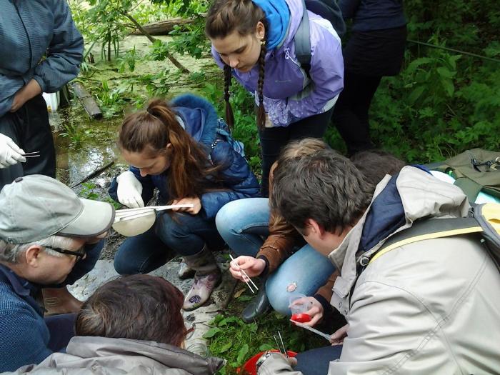 Полевые занятия по экологии. Автор24 — интернет-биржа студенческих работ