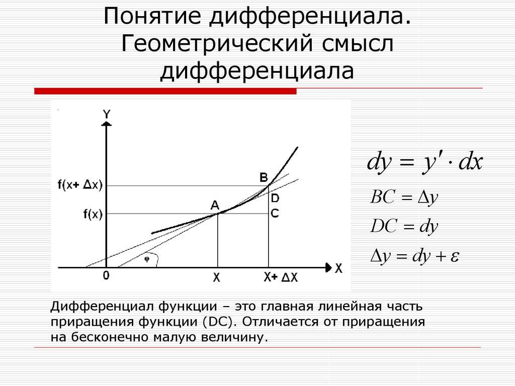 Геометрический смысл дифференциала функции. Автор24 — интернет-биржа студенческих работ