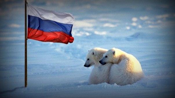 Климат российской Арктики. Автор24 — интернет-биржа студенческих работ